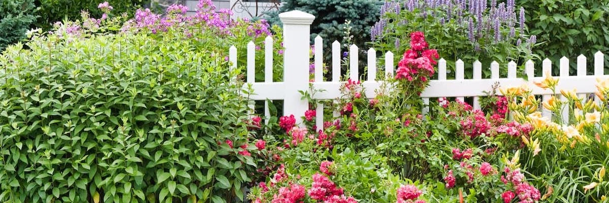 A fence with flowers and bushes around it
